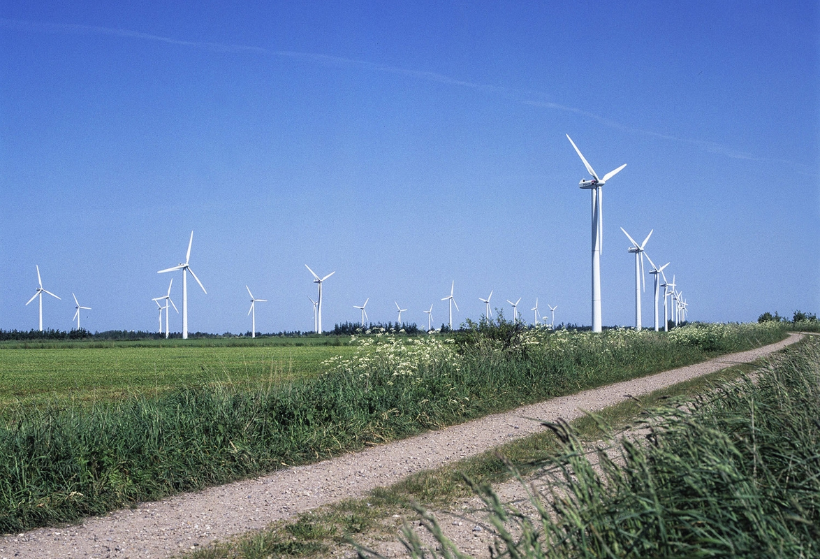 Rejsby Hede Wind Farm